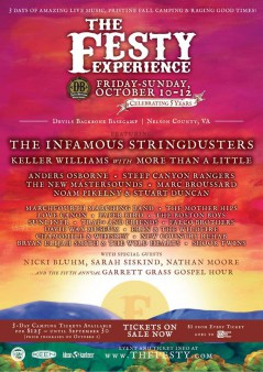 The Festy Experience 2014