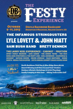 The Festy Experience 2015