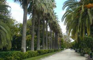 Jardines de Viveros - Valencia